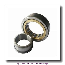 FAG NU317-E-M1  Cylindrical Roller Bearings