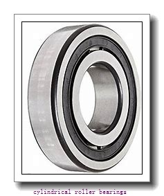 35 mm x 100 mm x 25 mm  FAG NU407-M1  Cylindrical Roller Bearings