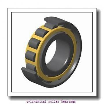 FAG NUP311-E-M1-C3  Cylindrical Roller Bearings