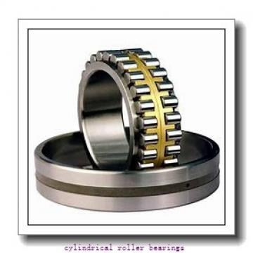 FAG NUP220-E-M1  Cylindrical Roller Bearings