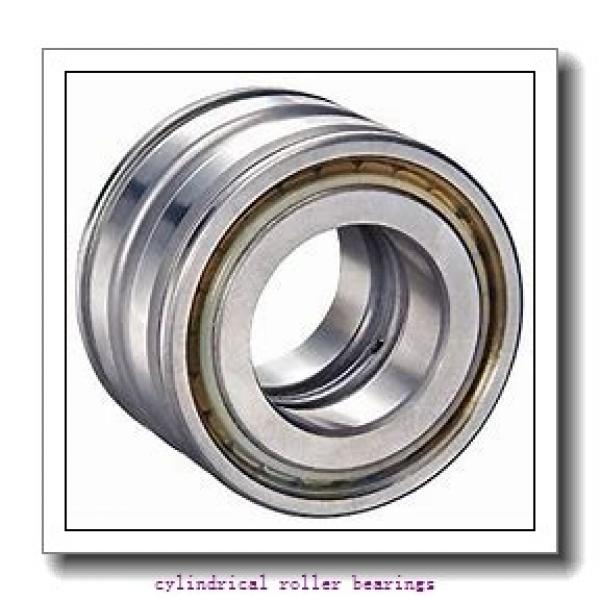 FAG NUP313-E-M1-C3  Cylindrical Roller Bearings #1 image